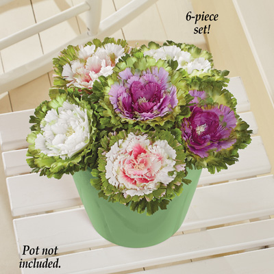 Artificial Cabbage Rose Floral Stems, Set of 6