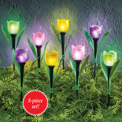 Tulip Solar Garden Stakes - Set of 8