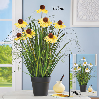 Long-Stem Daisy Coneflower Faux Plant with Planter