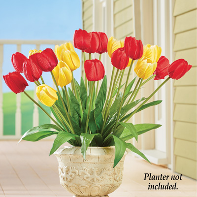 Red & Yellow Tulip Bushes - Set of 3