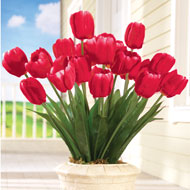 Springtime Tulip Bushel Floral Picks - Set of 3