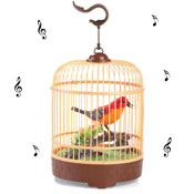 Sound Activated Singing Bird in Cage - 28490