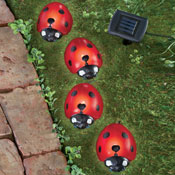 Ladybug Solar Garden Lights - Set of 4 - 29444