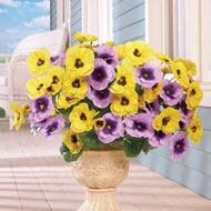 Indoor or Outdoor Artificial Pansies - Set of 3