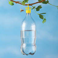 Bottle Insect Traps - Set of 6 - 34729