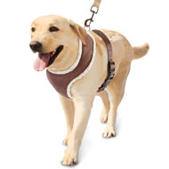 Soft Sherpa Lined Dog Harness - 36551