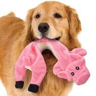 Stuffing Free Farm Animals Dog Toys - Set of 4