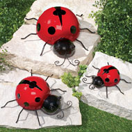 Climbing Insects Decoration - Set of 3 - 38619