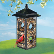 Fly Through Bird Feeder, Black Metal - 38701