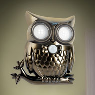 Adjustable Motion Activated Hooting Owl