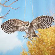 Outdoor Swinging Owl in Flight - 39278