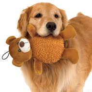 Giggling Dog Toys - Set of 2