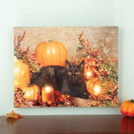 Lighted Black Cat and Pumpkins Wall Canvas - 39690