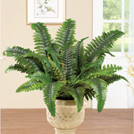 Artificial Boston Fern Shrub Plant - 42021
