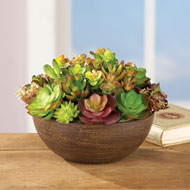 Faux Succulents in Round Planter - 42221
