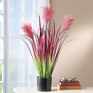 Faux Burgundy Pampas Grass in Pot - 42237