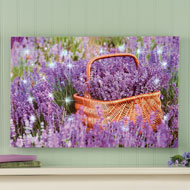 Lavender Flower Field Lighted Wall Canvas