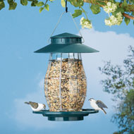 Green Hanging Outdoor Bird Feeder - 42520