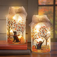 Fall Pets Mason Jar Plug In Lamps - 43712