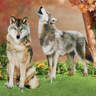 Wolf Decorative Garden Stakes Set, 2 pc - 43770