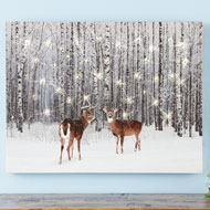 Lighted  Deer in Forest Canvas Wall Art - 44132
