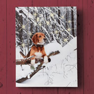 Lighted Snow Day Dog Canvas Wall Art - 44133