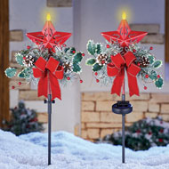 Holiday Star Solar Lighted Garden Stakes