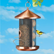 Copper-Look Bird Feeder with Two Perches - 45674