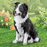 Black and White Border Collie Garden Statue - 45714