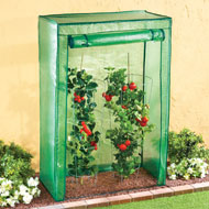 Plant Protecting Portable Greenhouse - 45782
