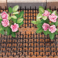 Cat and Bird Spikes for Flowers and Plants - 45785