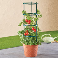 Terracotta Colored Planter with Plant Support - 45793