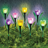 Tulip Solar Garden Stakes - Set of 8 - 45883