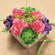 Blooming Rose and Succulent Arrangement - 46575