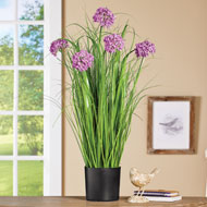 Faux Allium Large Blossoms Plant - 46590
