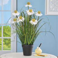 Long-Stem Daisy Coneflower Faux Plant with Planter - 46592