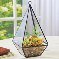 Glass Teardrop Terrarium with Black Metal Frame - 46849