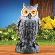 Motion Activated Light Up Owl Yard Statue