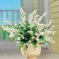 Lily of the Valley Bushes - Set of 3 - 47250