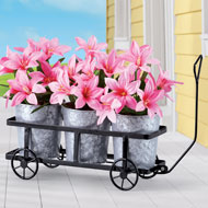 Triple Plant Trolley Holder with Planters