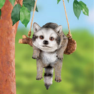Rope Swing Hanging Raccoon - 47618