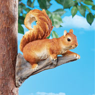 Squirrel Branch Hanger - 47624