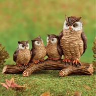 Owl Family on Branch - 47744