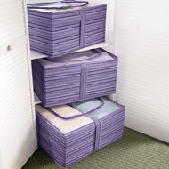 Purple Stripe Clearview Storage Bags - Set of 3 - 95460
