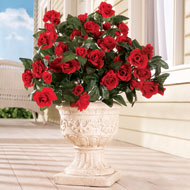 Floral Rose Bushes - Set of 3