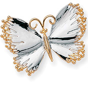 Two Tone Butterfly Brooch Pin